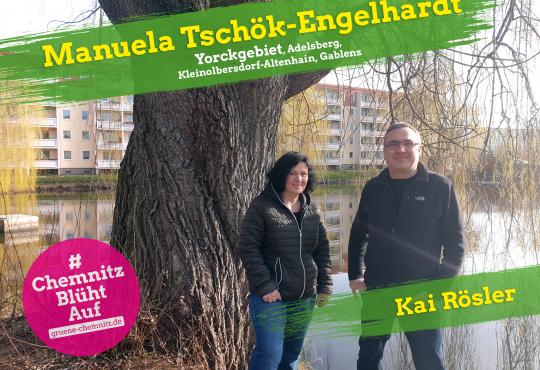Baumscheiben bepflanzen auf dem Brühl mit Manuela Tschök-Engelhardt @ GRÜNES Büro